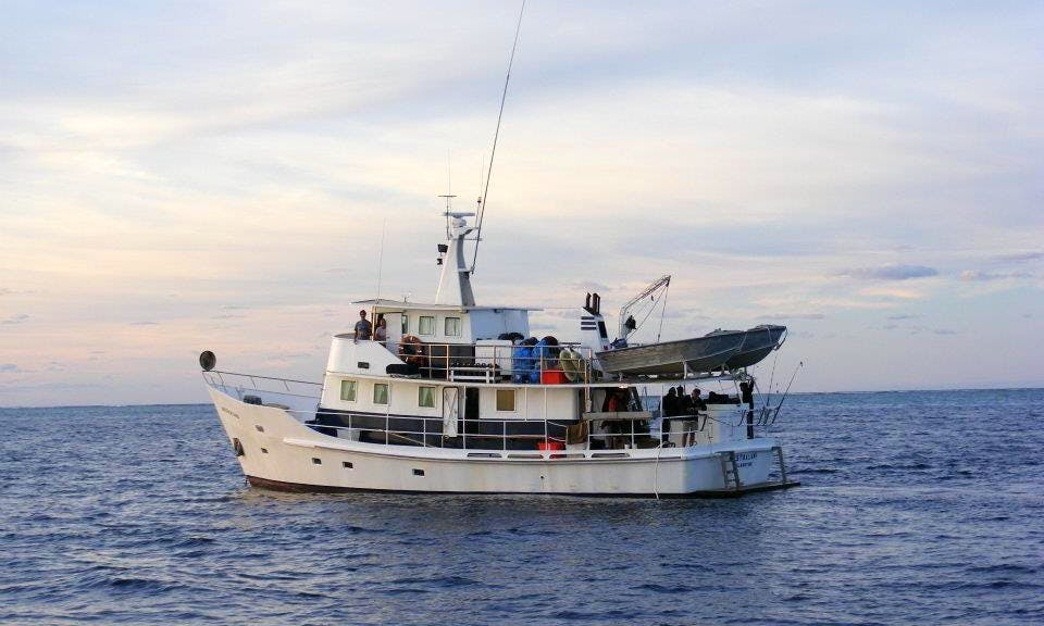 63' Fishing Yacht Charter In Queensland
