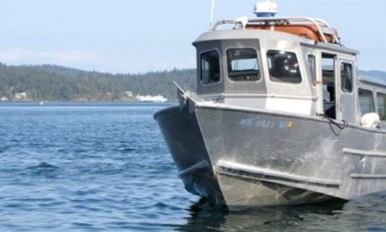 30' Trawler Charter In Eastsound, Washington