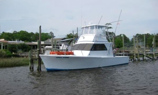 Offshore Fishing Charter On