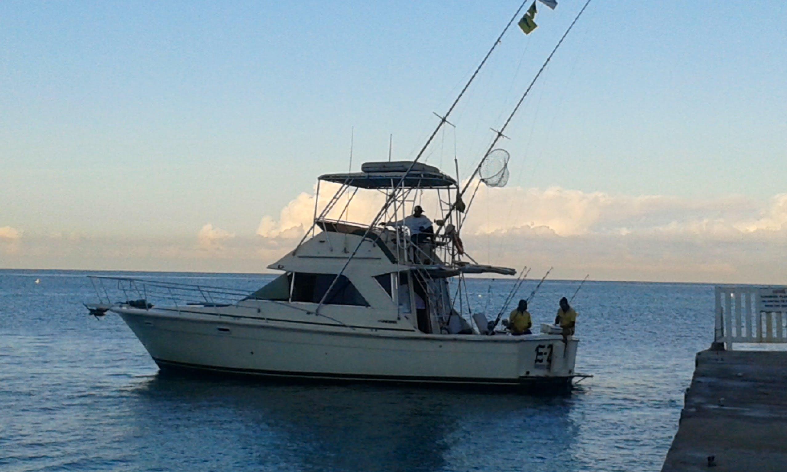 Sport fishing in Montego Bay