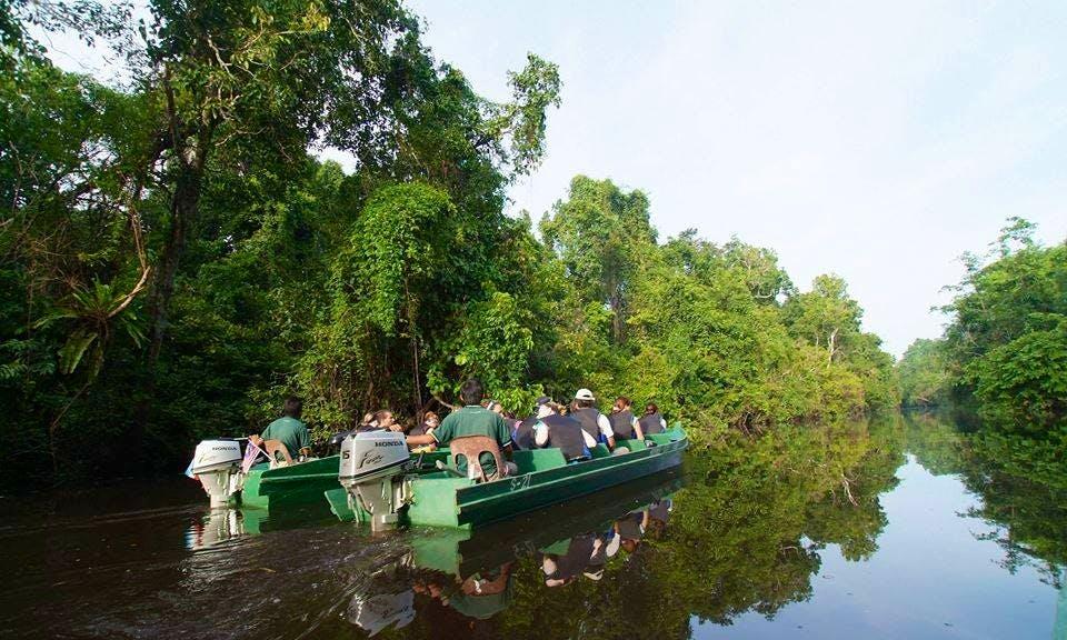 Sukau Rainforest Lodge (Raft)