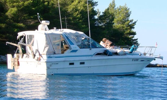 Sea Ray 340 Motor Yacht Charter For 8 Persons In Sukošan, Croatia
