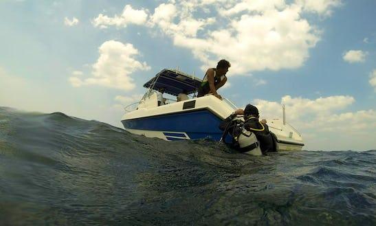 Colombo Diving, Mt. Lavinia (motor)