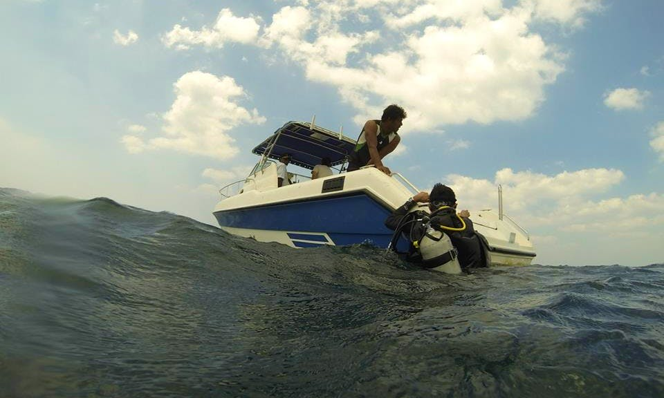 Colombo Diving, Mt. Lavinia (Motor)
