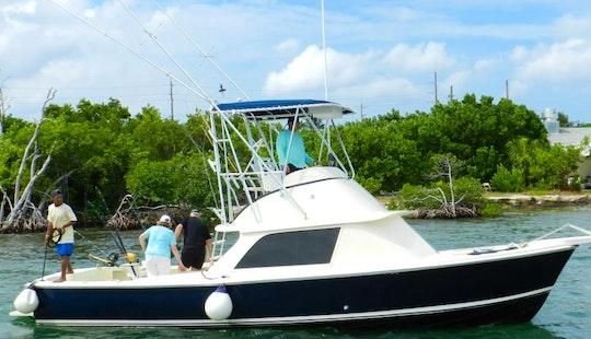 Sport Fisherman Fishing Charter In George Town, Cayman Islands