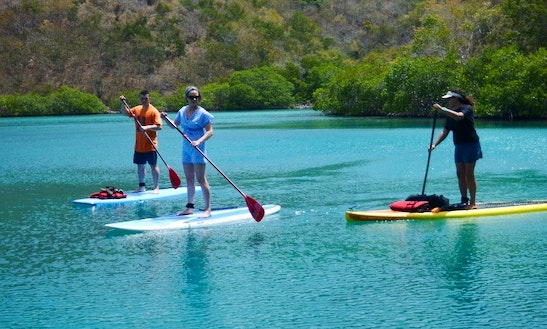 Stand Up Paddleboard Rental In Virgin Islands