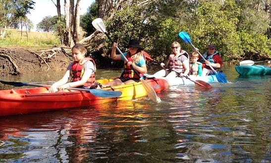 Eco Guided Kayak Tour In Brunswick Heads