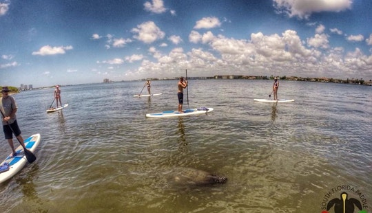 Paddleboard Rental/ Eco Tour In North Palm Beach