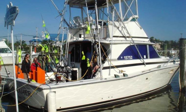 38ft Bertram Sportfishing Yacht Charter in 3 Sunderland, Maryland