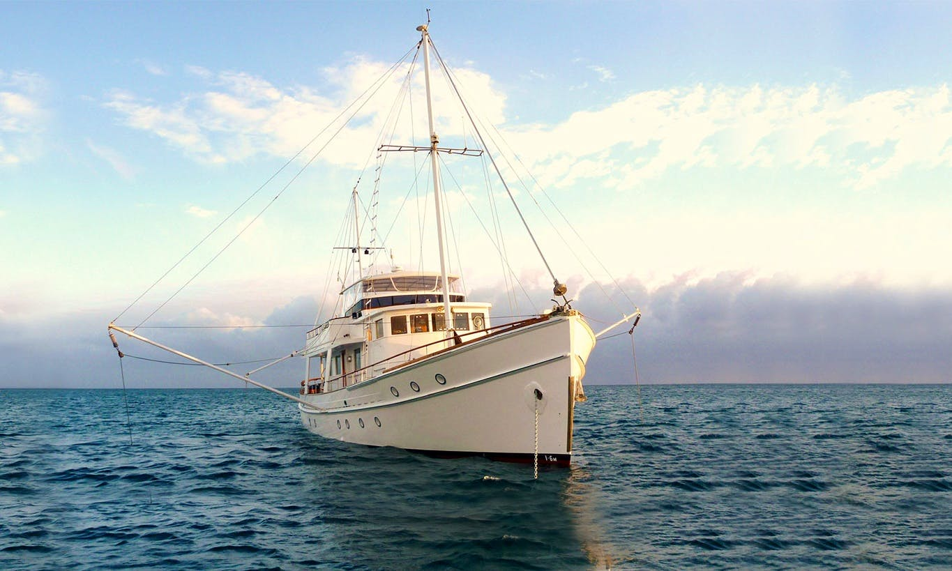 Fishing Charter  Island Tours in Queensland
