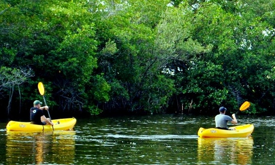 Paddle A Single Person Ocean Kayak To Indian River Lagoon From Vero Beach, Florida