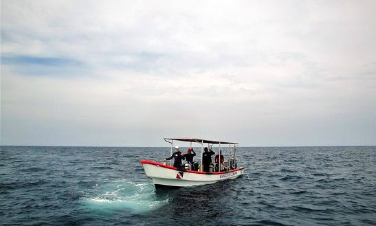 Dive Boat In Panamá
