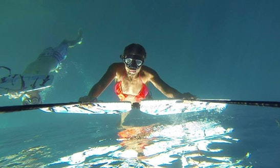 Try Subwing And Fly Underwater