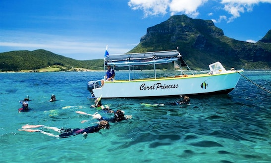 'coral Princess' Boat Tours In Lord Howe Island