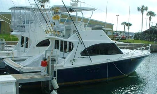 Fishing Charter With 485 Hp Volvo Turbo Engines In Port Canaveral