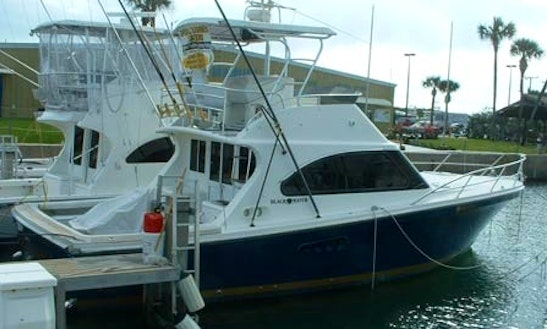 'ofishal Business' Fishing Charter In Port Canaveral