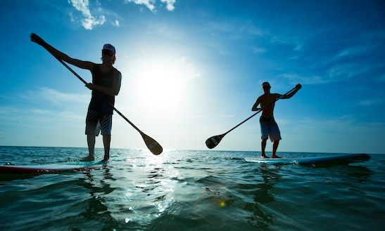 Stand Up Paddleboard Rental In Clearwater, Florida