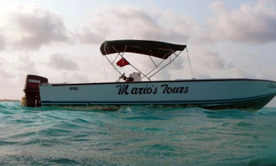 Boat Diving & Snorkeling Tours In Caye Caulker
