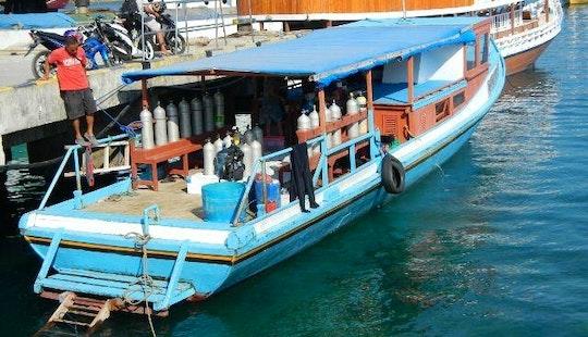 Diving Boat Day Trips In Komodo