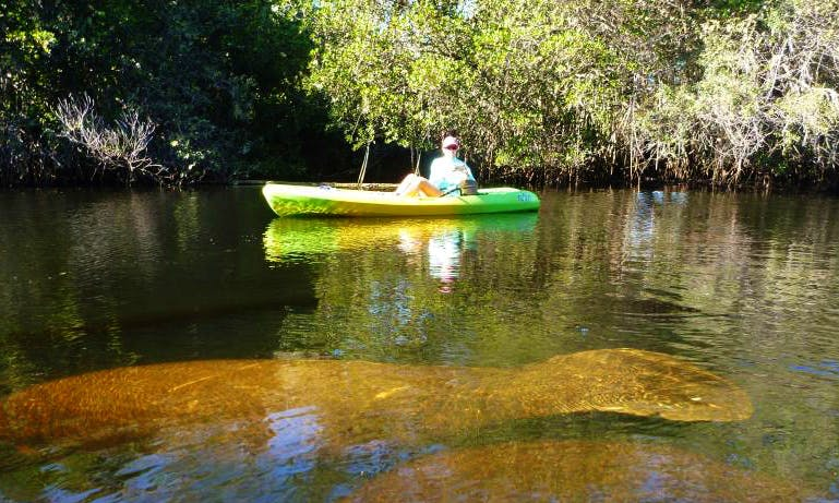 Guided Kayak Eco-Tours to the Historic Spanish Point to Osprey from Sarasota, Florida