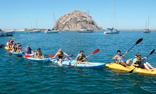 Double Kayak Rental In Halibut Cove