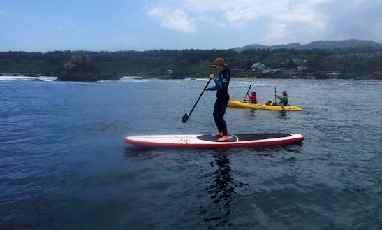 Sup Tours And Rental In Torrance