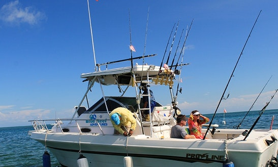 Guided fly fishing trips in belize cabo san lucas for Punta gorda fishing