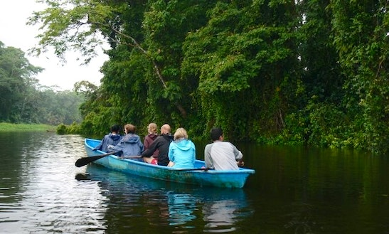 Canoe Tours In Tortuguero