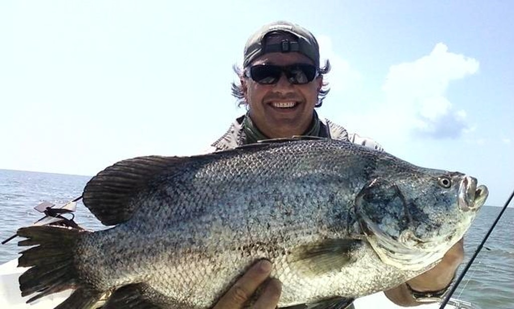 Guided bay fishing in apalachicola getmyboat for Apalachicola fishing charters