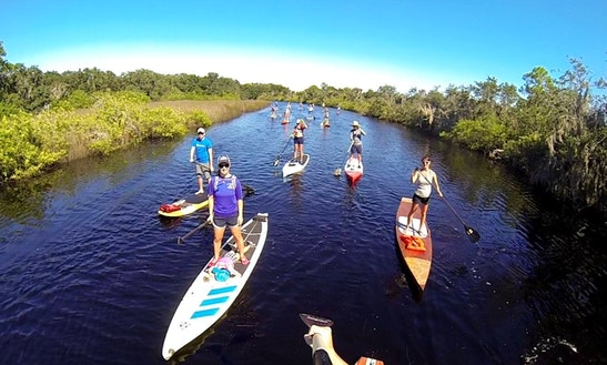 Paddleboard Rental In Oldsmar
