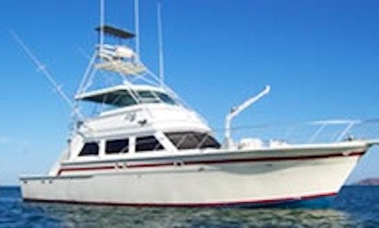 58' Sportfishing Charter In Pennsylvania