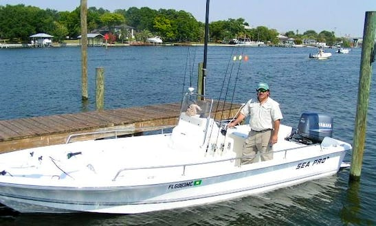 Enjoy 21.5 Ft ( Captained Only ) Center Console Fishing Charter In Tampa, Florida