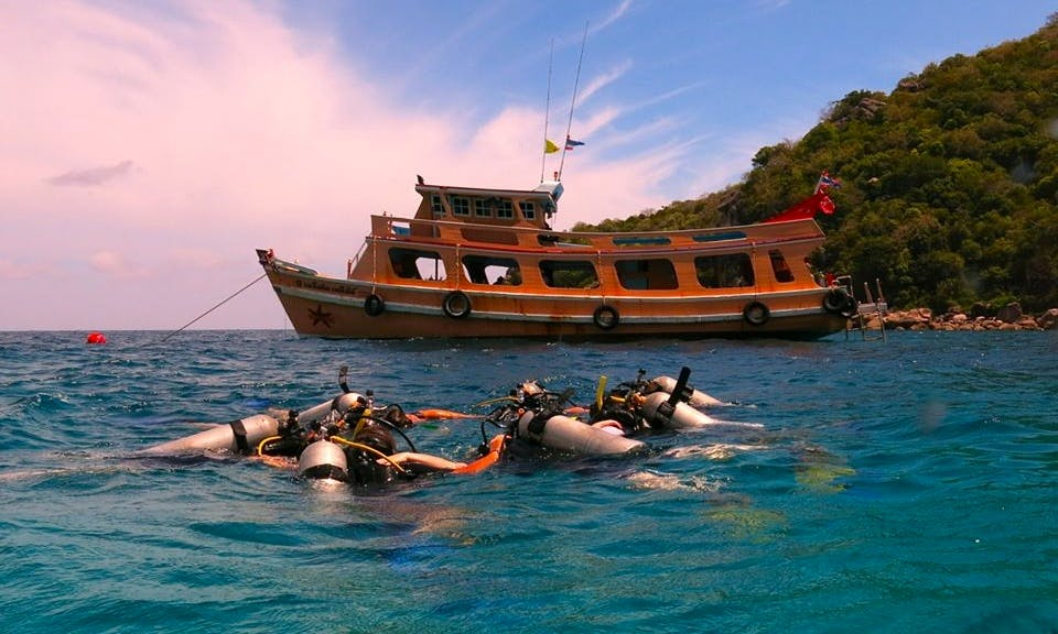 Discover Scuba Diving with Professional Instructor Offered in Koh Tao, Thailand