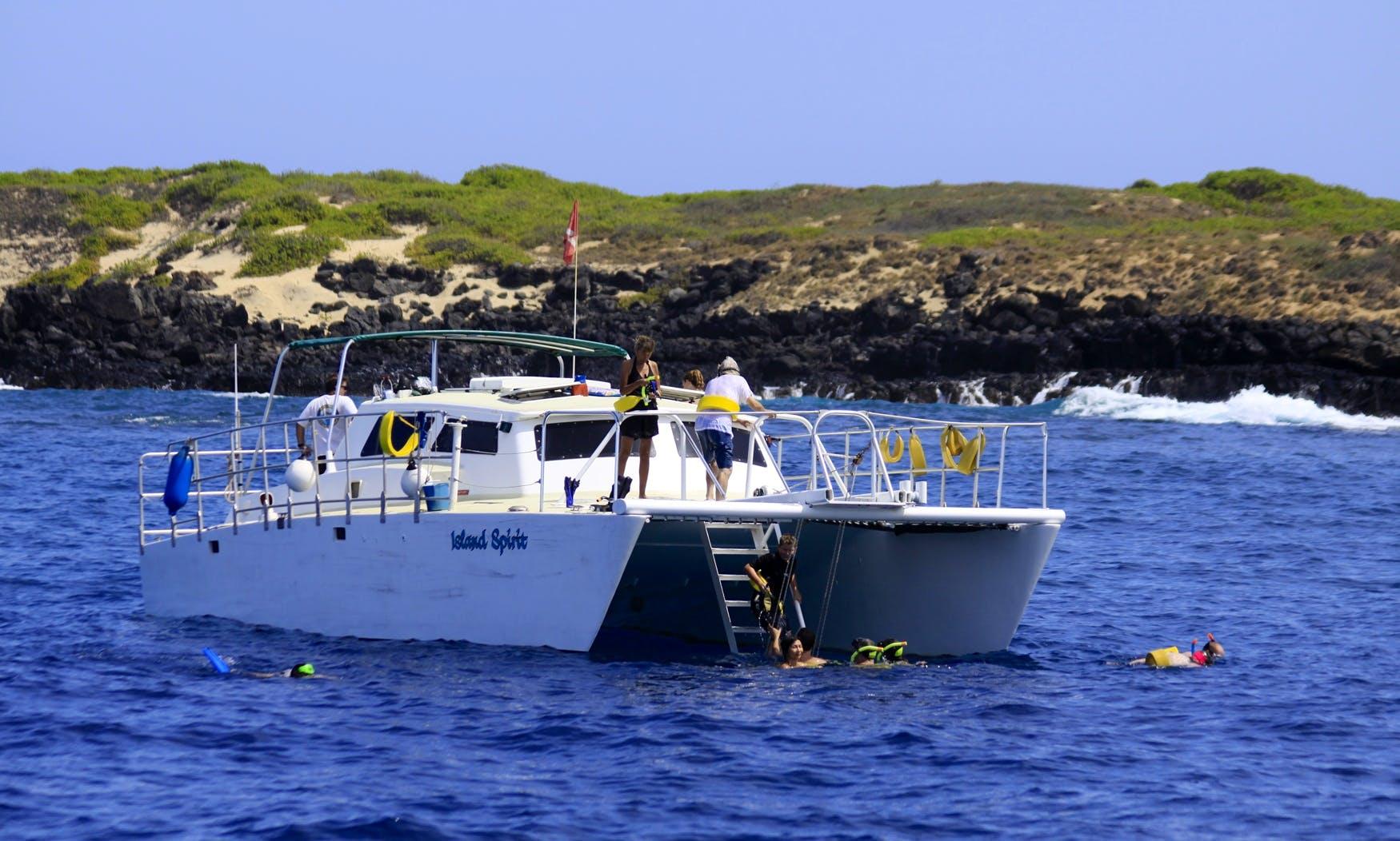 Deluxe Wildlife Catamaran Cruises In Waianae