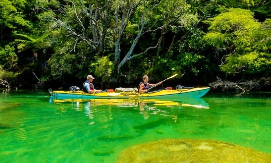 Kayak Rental In The Abel Tasman.
