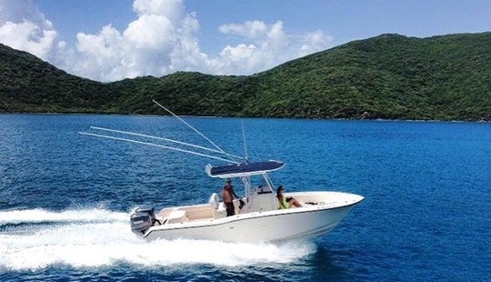 Fishing Charter On 24' Grady White Center Console In San Juan, Puerto Rico