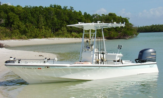Enjoy Fishing Trips In Naples, Florida