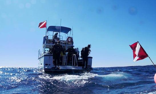 46' Newton Boat Dive Trips & Padi Certification In Miami Beach