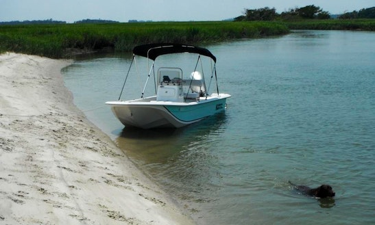 Fishing charter 31 39 top shot getmyboat for Savannah fishing charters