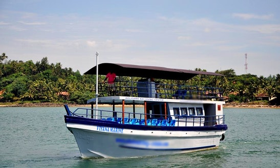 Whale Watching Tour In Weligama