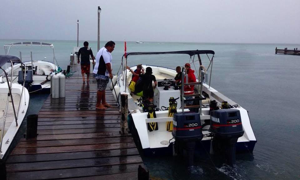 Scuba Dive Boat In San Pedro