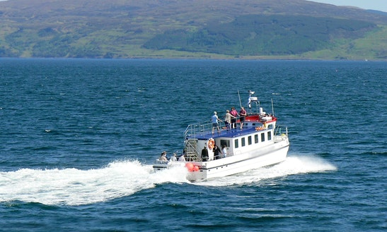Boat Tours From Tobermory