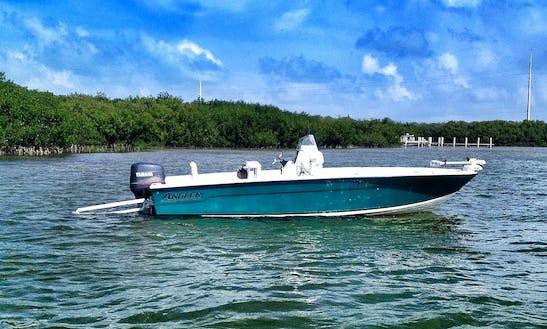 Fishing Charter On 22' Angler Bay Boat In Islamorada, Florida
