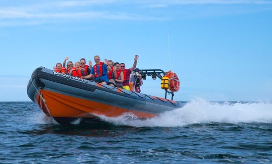 'bright-water' Rib Adventure Trips In Eyemouth