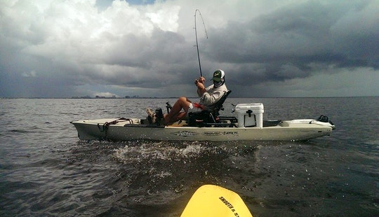 Instructional Kayak Fishing Trips In Tampa Bay