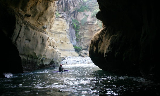 Single Malibu Kayak Rental & Tours In Eureka