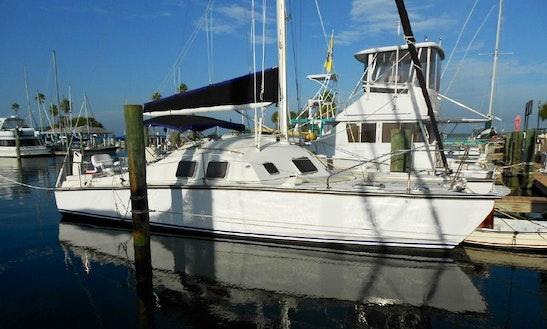 Charter 32' Carlson Catamaran In Dunedin, Florida