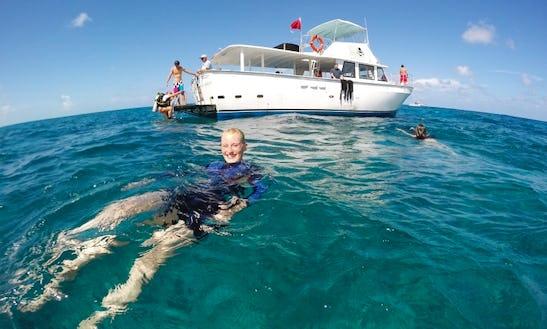 Diving Trips In Key Largo, Florida
