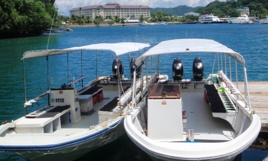 Dive Boats In Koror