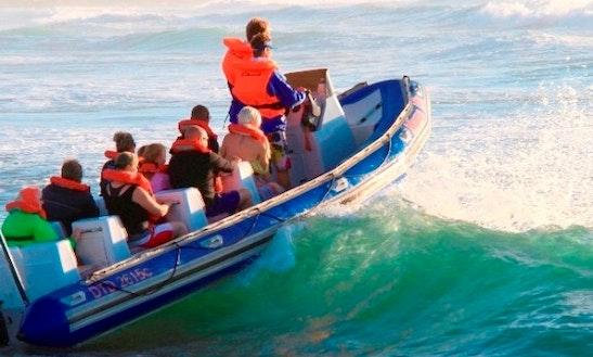 Mama Mia Fun Boat Rides In Shelly Beach